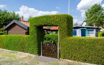 Jahresstellplatz mit schöner grüner Hecke